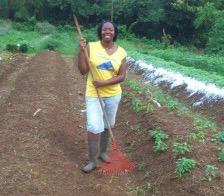 Abena Clarke - Woofing in Martinique
